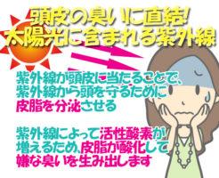 夏は要注意!紫外線は頭皮の臭いの原因になる?_頭皮の臭いと紫外線の始まり