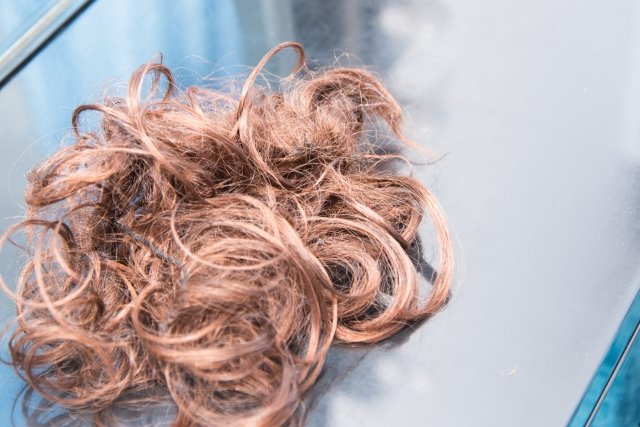 あなたのシャンプーはくせ毛を作る!?驚きの効果!さくらの森ハーブガーデンシャンプー