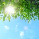 夏に悩みたくないなら!夏の紫外線ダメージで頭皮環境を悪化させない
