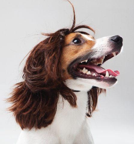 必殺!髪の毛を早く伸ばす方法!生活に気を付ければ髪を早く伸ばせる