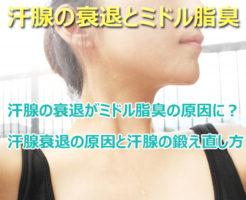 ミドル脂臭と汗腺の衰退の関係性はあるの?全くないとは言えない汗腺の衰退