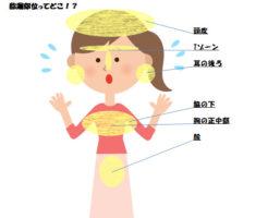 女性ホルモンが脂漏性皮膚炎を悪化させる!?女性ホルモンが頭皮に与える影響①