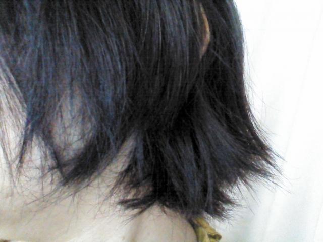 昔のメリットシャンプーと大違い?頭皮の臭いに効果があると口コミ殺到_髪の毛パサパサ