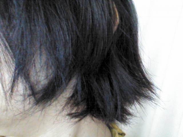 髪の毛が乾燥している