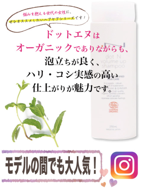 ドットエヌ_モデル大人気