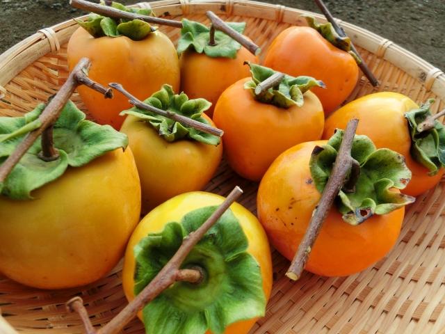 ミドル脂臭に渋柿は効果的なのか?柿タンニンという成分が作用している