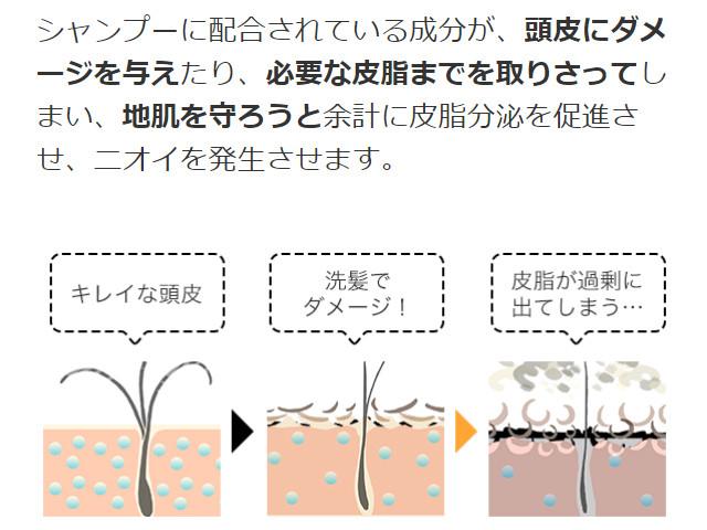 クリアハーブミスト_シャンプーの成分皮脂