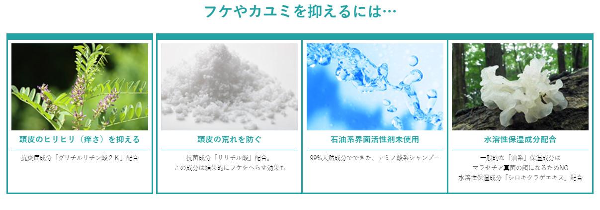 カダソンシャンプー_成分