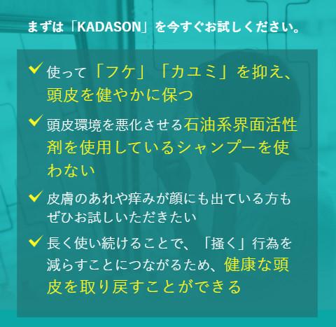 カダソンシャンプー_効果