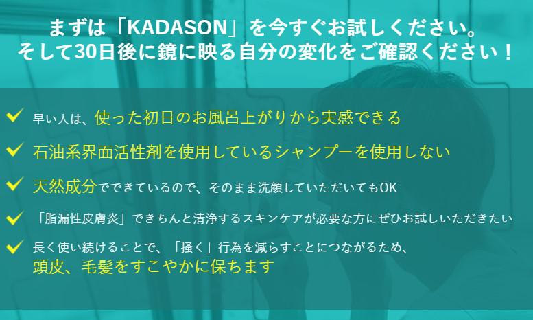 カダソン_つかってみて