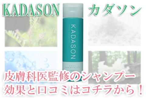 【20190820】カダソン①画像